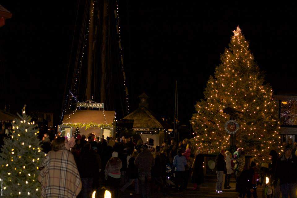 bowens wharf christmas tree lighting