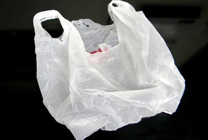 plastic bags controlled assessment essay Plastic bags versus paper bags are plastics good or bad  there's no doubt that plastics and the substances they contain are some of the most tested and controlled.