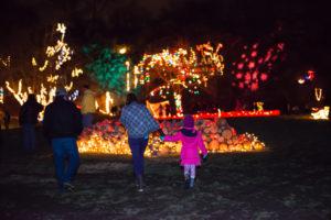 12th Annual Illuminated Garden at Ballard Park @ Ballard Park |  |  |