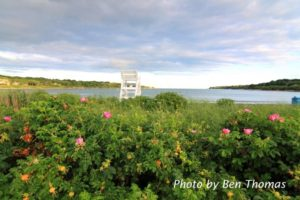"""A Beautiful View"" An Art Auction Event @ Atlantic Resort 