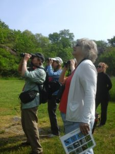 Bird Walk at Ballard Park @ Ballard Park |  |  |