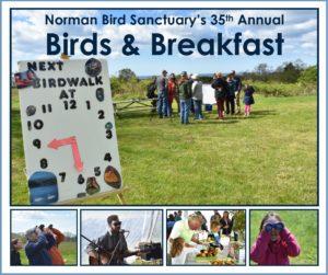 Norman Bird Sanctuary's 35th Annual Birds & Breakfast @ Norman Bird Sanctuary        