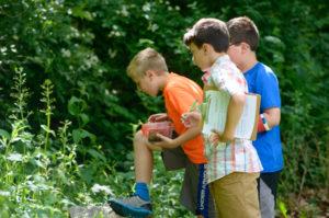 HOME SCHOOL LESSON: Botany @ Ballard Park        
