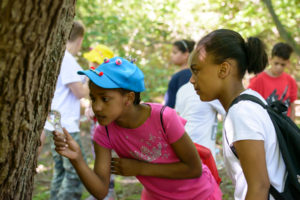HOME SCHOOL LESSON: Habitat Hike @ Ballard Park |  |  |