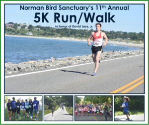 Norman Bird Sanctuary's 11th Annual 5K Run/Walk @ Norman Bird Sanctuary |  |  |